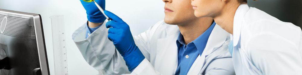 CDU: Sorge um Ausbreitung fremder Mückenarten in Deutschland